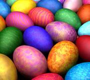 dori_eggs_11.08.11